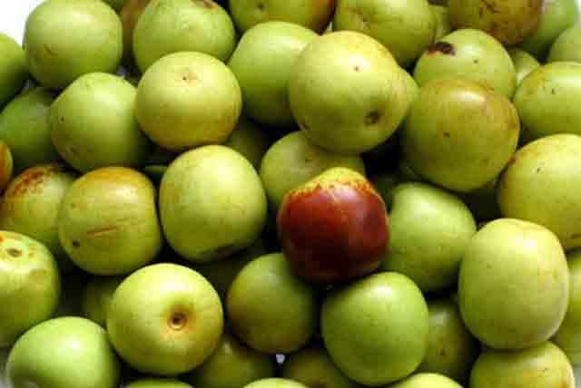 青枣的营养价值和功效