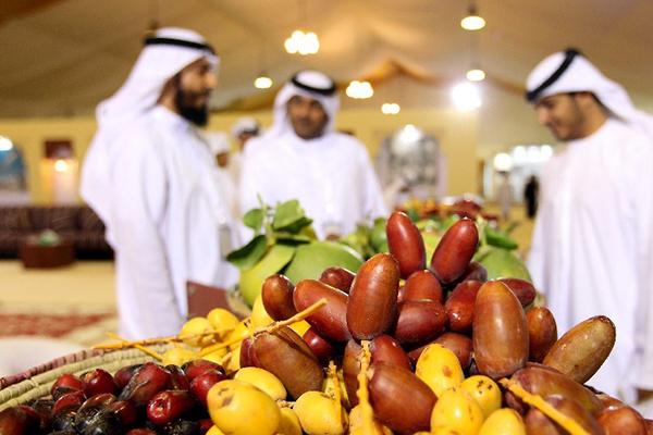 中东椰枣为什么受阿拉伯人热爱