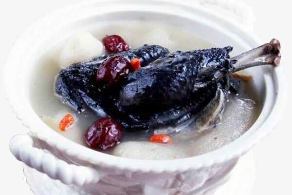 红枣竹荪乌鸡汤的做法
