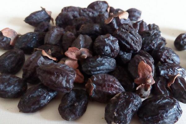黑枣的营养价值