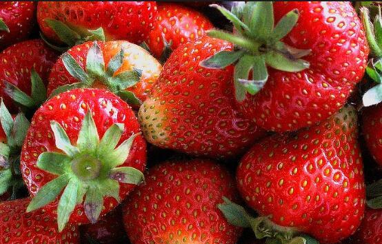 草莓什么季节吃最好
