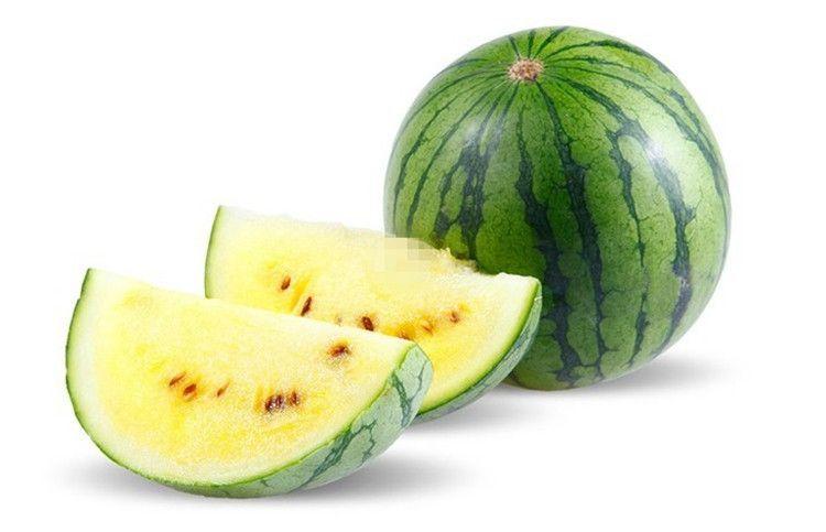西瓜品种-特小凤