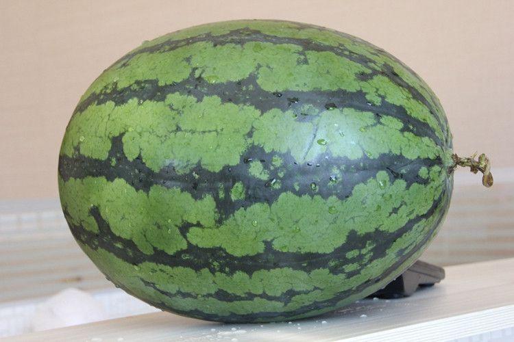 西瓜有哪些品种:缅甸甜王