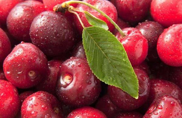 樱桃美容养颜
