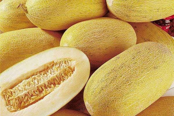 哈密瓜的食用禁忌
