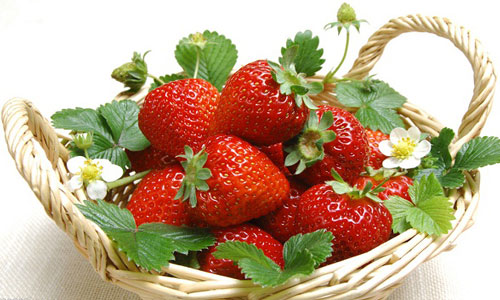 吃草莓的坏处