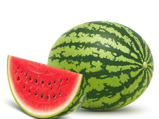 西瓜籽怎么种出西瓜