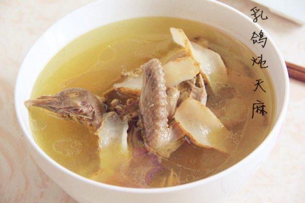 天麻乳鸽汤